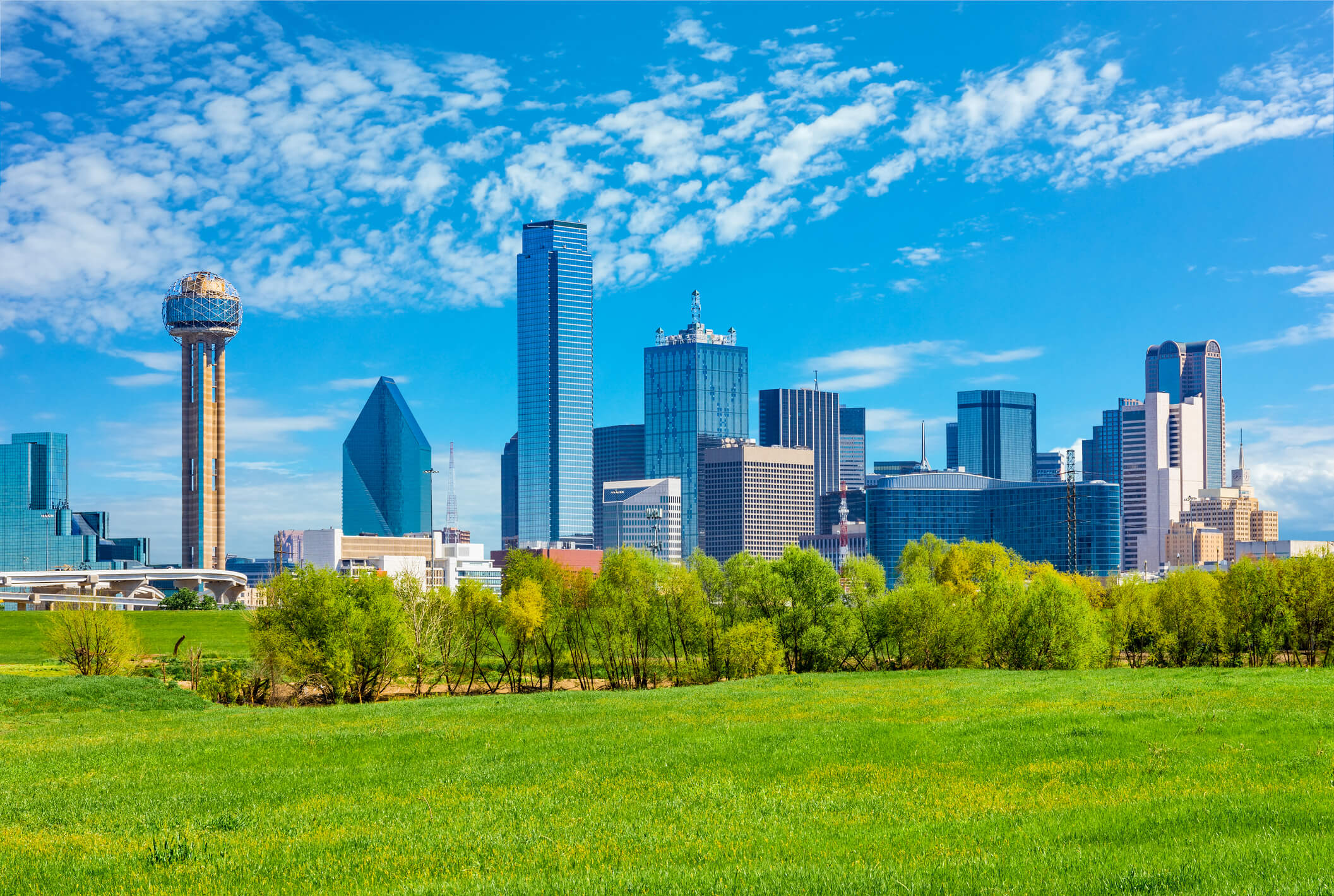 This is a photo of the downtown dallas skyline with trees and skyrises in the back.